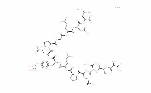 pp60 c-src (521-533)/phosphorylated