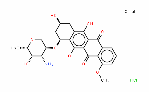 Adriamycin(Doxorubicin)/