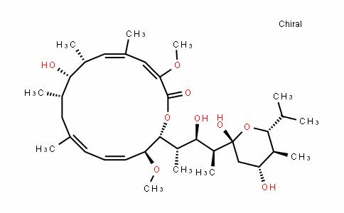 Bafilomycin A1/