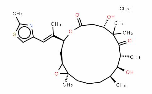Epothilone B/