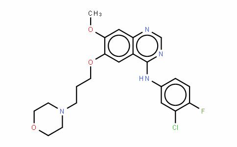 Gefitinib/ZD-1839,Iressa