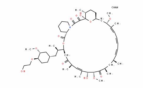 Everolimus(RAD001)/RAD001