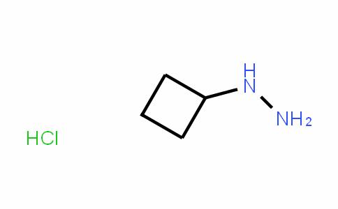 cyclobutylhydrazine hydrochloride