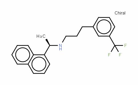 甲状旁腺激素