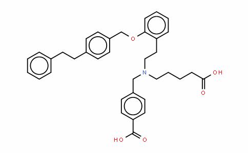 BAY58-2667