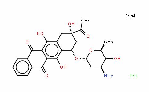 盐酸依达比星