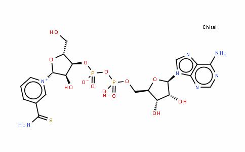 硫代辅酶腺嘌呤二核苷酸