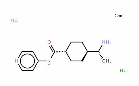 Y27632 (hydrochloride)