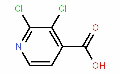 2,3-Dichloro-4-pyriDinecarboxylic acid