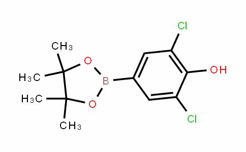 3,5-二氯-4-羟基苯硼酸频哪醇酯