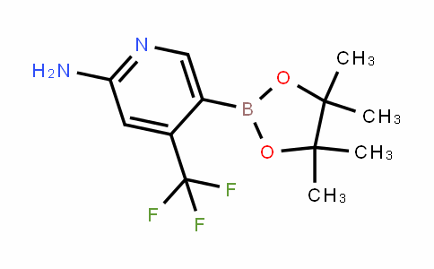 5-(4,4,5,5-tetramethyl-1,3,2-Dioxaborolan-2-yl)-4-(trifluoromethyl)pyriDin-2-amine