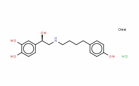 ARBUTAMINE (HyDrochloriDe)