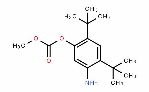 5-AMINO-2,4-DI-Tert-BUTYLPHENYL METHYL CARBONATE