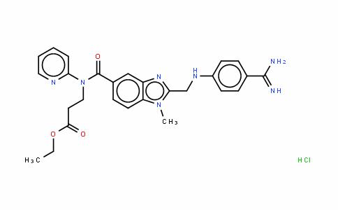 N-[[2-[[[4-(氨基亚氨甲基)苯基]氨基]甲基]-1-甲基-1H-苯并咪唑-5-基]羰基]-N-(2-吡啶基)-beta-丙氨酸乙酯盐酸盐