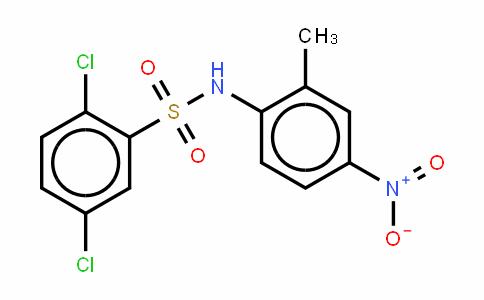 2,5-二氯-N-(2-甲基-4-硝基苯基)苯磺酰胺