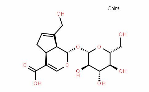 京尼平苷酸