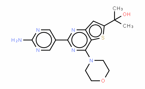 GNE-493