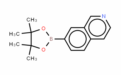 isoquinolin-7-yl-7-boronic acid