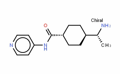 ROCK inhibitor